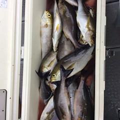 5月31日(木)午前便・イサキ釣りの写真その11