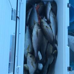6月13日(水)午後便・イサキ釣りの写真その3
