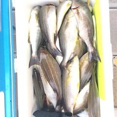6月17日(日)午前便・イサキ釣りの写真その9