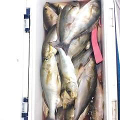 6月17日(日)午前便・イサキ釣りの写真その10