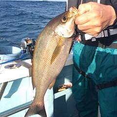 6月17日(日)午後便・イサキ釣りの写真その5