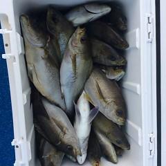 6月17日(日)午後便・イサキ釣りの写真その10