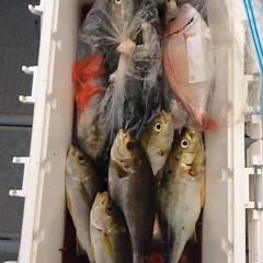 7月6日(金)午後便・イサキ釣りの写真その6
