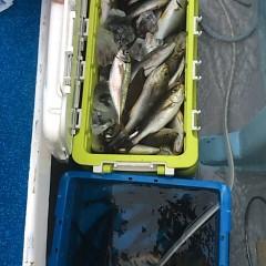 7月1日(日)午前便・午後便・イサキ釣りの写真その9