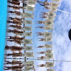 7月12日(木)1日便・スルメイカ釣りの写真その7