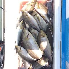 7月14日(土)午前・午後・イサキ釣りの写真その12