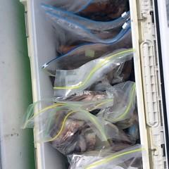 7月23日(月)1日便・スルメイカ釣りの写真その6