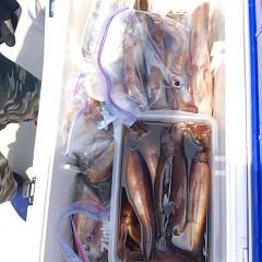 8月4日(土)1日便・スルメイカ釣りの写真その8