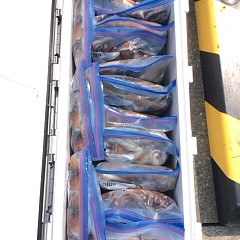 8月5日(日)1日便・スルメイカ釣りの写真その6