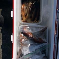 8月6日(月)1日便・スルメイカ釣りの写真その3
