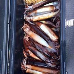 8月 11日(金) 1日便・スルメイカ釣りの写真その6