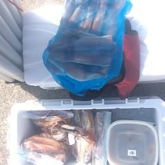 8月 11日(土) 1日便・スルメイカ釣りの写真その3