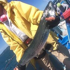 8月 17日(金) 午前便・タテ釣りの写真その5