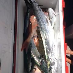 8月 17日(金) 午前便・タテ釣りの写真その8