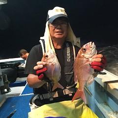 8月 31日(金) 午後便・ウタセ真鯛の写真その1