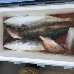 9月8日(土) 午前便・タテ釣りの写真その8