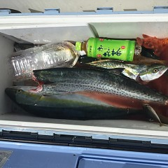 9月9日(日) 午前便・タテ釣りの写真その4