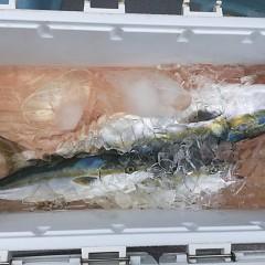9月10日(月) 午前便・タテ釣りの写真その1