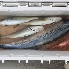 9月10日(月) 午前便・タテ釣りの写真その3