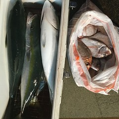 9月10日(月)午後便・ウタセ釣りの写真その3