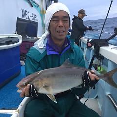 9月14日(金) 午後便・ウタセ真鯛の写真その5