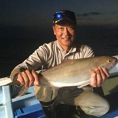 9月 18日(火) 午後便・ウタセ真鯛の写真その3