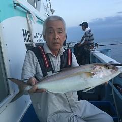9月 19日(水) 午後便・ウタセ真鯛の写真その2