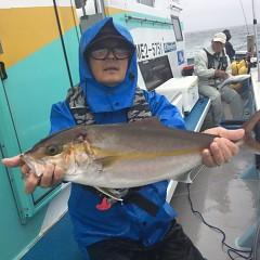 9月 20日(木) 午後便・ウタセ真鯛の写真その1