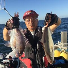 10月 8日(月) 午後便・ウタセ真鯛の写真その2