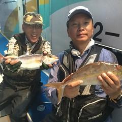 10月 8日(月) 午後便・ウタセ真鯛の写真その4