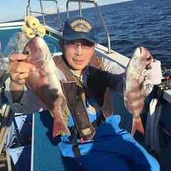 10月 8日(月) 午後便・ウタセ真鯛の写真その7