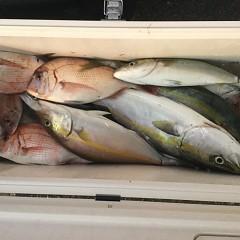 10月10日(水)午後便・ウタセマダイ釣りの写真その12