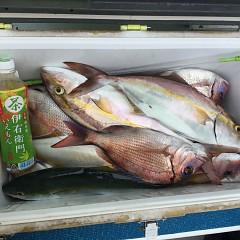 10月 15日(月) 午前便・ウタセ真鯛の写真その7