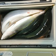 10月15日(月)午後便・ウタセマダイ釣りの写真その6