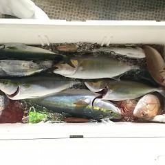 10月15日(月)午後便・ウタセマダイ釣りの写真その7