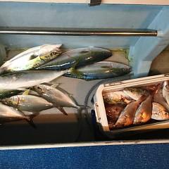 10月15日(月)午後便・ウタセマダイ釣りの写真その10