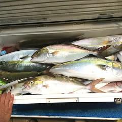 10月17日(水)午後便・ウタセ釣りの写真その3