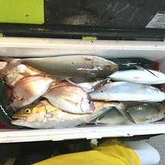 10月17日(水)午後便・ウタセ釣りの写真その5