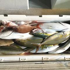 10月17日(水)午後便・ウタセ釣りの写真その7
