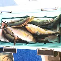 10月17日(水)午後便・ウタセ釣りの写真その8