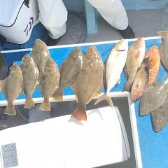 10月 20日(土) 午前便・ヒラメ釣りの写真その2