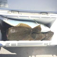 10月 21日(日) 午前便・ヒラメ釣りの写真その5