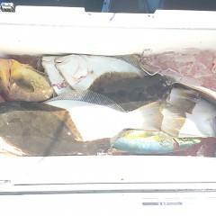 10月 21日(日) 午前便・ヒラメ釣りの写真その7