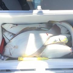 10月 21日(日) 午前便・ヒラメ釣りの写真その9