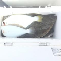 10月 29日(月) 午前便・ヒラメ釣りの写真その6