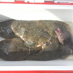 10月 31日(水) 午前便・ヒラメ釣りの写真その2