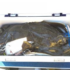 11月 8日(木) 午前便・ヒラメ釣りの写真その8