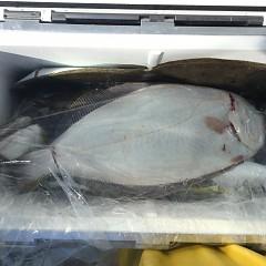 11月 8日(木) 午前便・ヒラメ釣りの写真その12