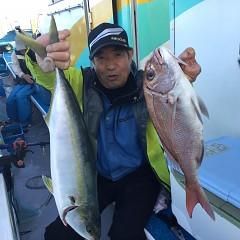 11月 8日(木) 午後便・ウタセ真鯛の写真その2