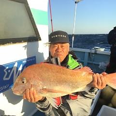 11月 10日(土) 午後便・ウタセ真鯛の写真その1